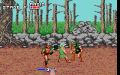 Golden Axe v EGA