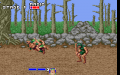 Golden Axe ve VGA
